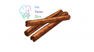 Цейлонска Канела(истинска) Срещу Касия – по-често купуваната и по-токсичната!