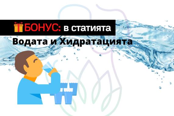 Дехидратация Вода Жажда